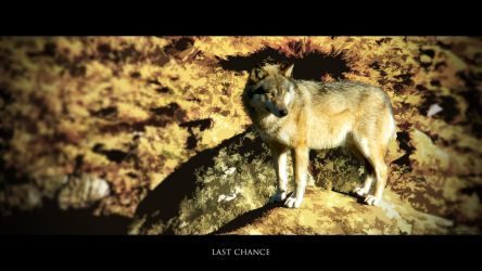 Last Chance by Oberon7up