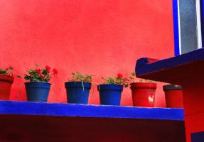 Colors of Mexico III by azizamaheen