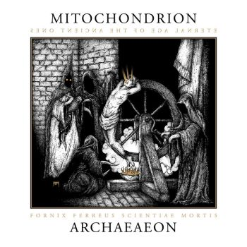 Mitochondrion - Archaeaeon by jhannigan