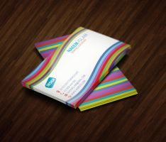 2 In 1 Business Card Bundle by naeem1200