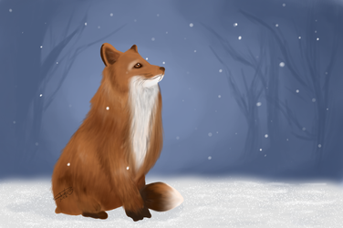 Fox in the Snow (Prints available) by im-something-else