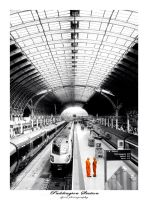 Paddington Station by djoel