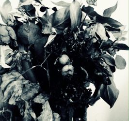 Bouquet Of Decay V by Bishounen-Fangirl