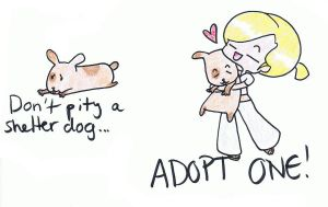 Adopt a shelter dog by Greatest-Nightmare