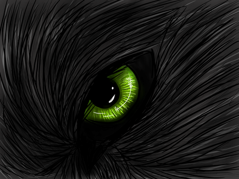 Wolf eye by CitrisLime
