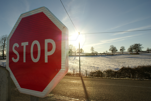 Snowed in (1) - Stop Sign by mari6s
