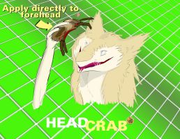 //?Apply directly to the Sergal by 43616b65537079