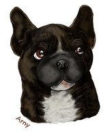 Arny the frenchie by clotus