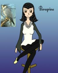 Ace - Peregrine - Falcon by TerraYume