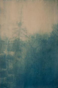 Ghost Snag Cyanotype by mouse2cat