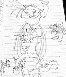 some different kinds of dragons by ShortageTraveler
