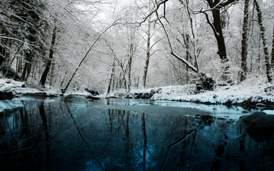 Winter chill by fisk