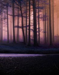 Forest and lake premade BG III by StarsColdNight