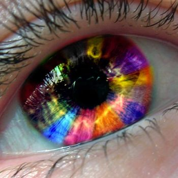 Colorful Iris by AgtBauer24