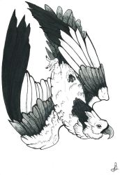 Traditional Eagle by Debby-X