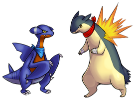 gabite and typhlosion