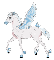 N3215 Padro Foal Design by casinuba