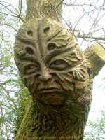 The Green Man by grinagog