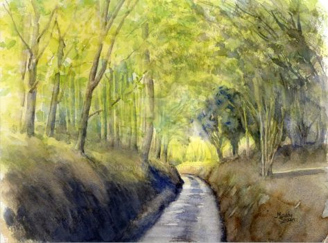 Woodlands, watercolour by MaddySwan