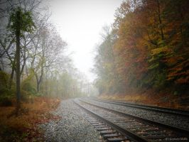 No train coming by snaphappy101