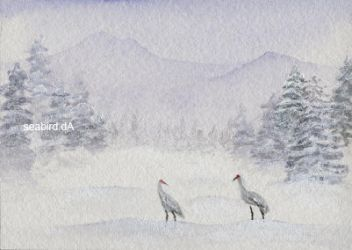 ACEO - Silent Journey by seabird
