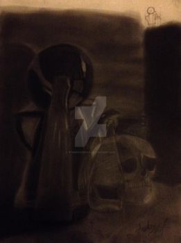 Final Charcoal Project by StarRacerEva