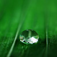 Droplet 12 by josgoh