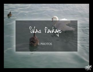 Swans Package by Arsenica-stock