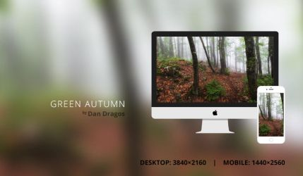 Green Autumn Wallpaper by dandragos