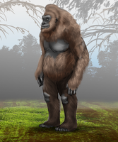 Cryptozoology: The Humble Sasquatch by vcubestudios