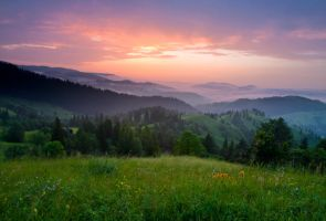 Morning of June by lica20
