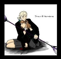 Draco and Hermione by VegaSailor