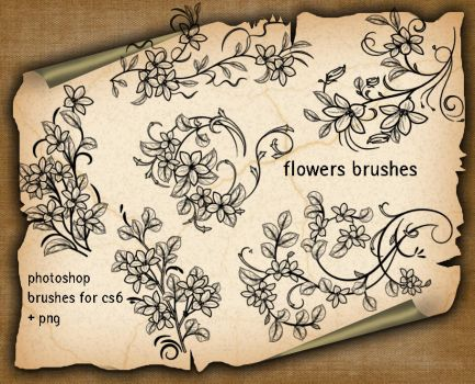 Flowers Decorative Brushes2h7y33 by roula33