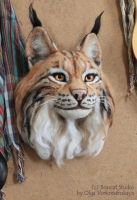 Lynx wall decor by thai-binturong