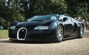 Veyron by FurLined