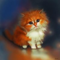 Fluffy Cat by ArtofOkan