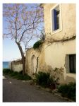 The House, the Tree n the Sea by demisone