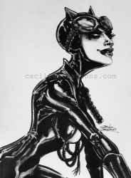 Catwoman by cac-illustrations