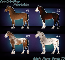 Horse Adoptable Adult Batch - 10 by Cat-Orb-Shop