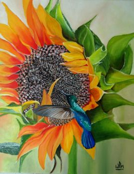 Sunflower and hummingbird by WendyMitchell