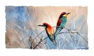 European Bee-Eater by Abstractmusiq