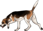 Foxhound Companion by TokoTime