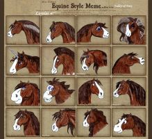 Equine Style Meme by Valley-of-Fury