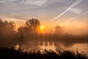 Give me a title................? by Betuwefotograaf