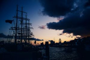 Hamburg Harbour by teuphil