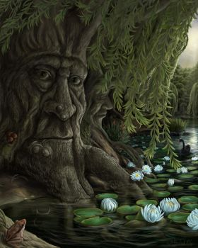 Old Man Willow by MBoulad