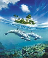 DOLPHIN family by illugraphy