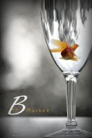 A Glass of Fish by BahiMashat