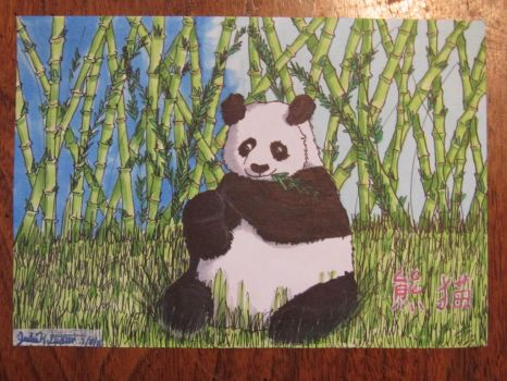Panda eating bamboo by 0--Copperfrost--0