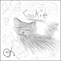 Cookie by Laven